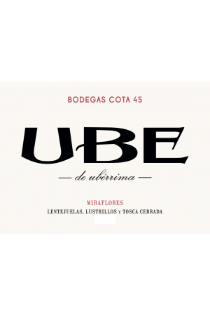 UBE Miraflores 2017