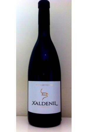Xaldenil 2015